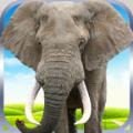 大象野外生存模拟游戏