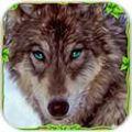 愤怒之狼模拟游戏