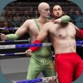 真正的标签队摔跤革命2018战士安卓版
