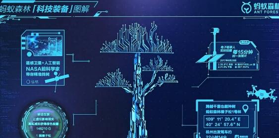 支付宝蚂蚁森林怎么找树?支付宝蚂蚁森林找树怎么玩?[多图]