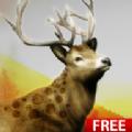 狩猎挑战游戏官方最新版(Hunting Challenge) v1.1