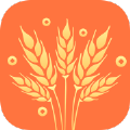 麦穗贷款app手机版 v1.0.4