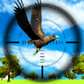 丛林鸟类狩猎官方安卓手机版 v1.0