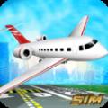 仿真飞机驾驶游戏安卓手机版 v1.0
