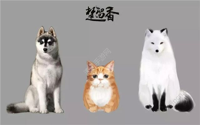 楚留香手游宠物系统玩法曝光 种族繁衍/培养全新新萌宠图片4