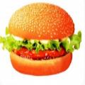 汉堡钱包手机贷款app v1.3.3