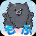 超级毛茸茸catch日文安卓版游戏 3.0.0