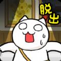 逃脱游戏小猫与奇妙美术馆游戏安卓版 v1.01